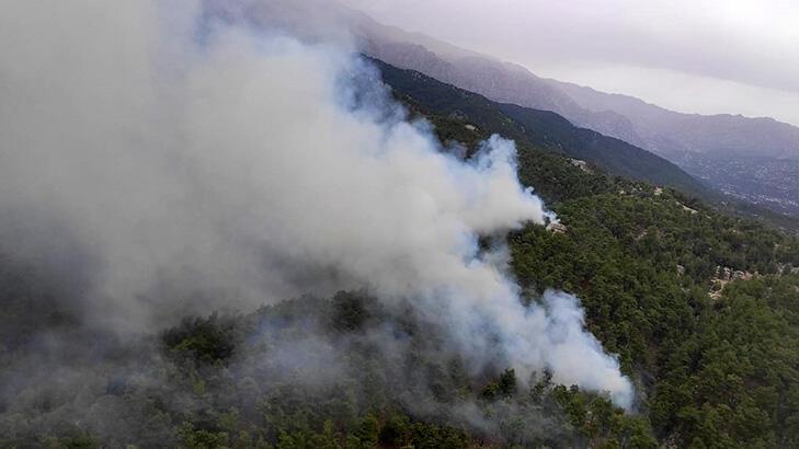 Son dakika... Manavgat'ta orman yangını!